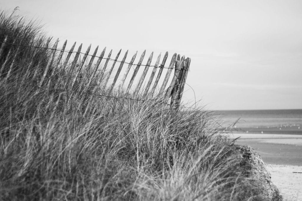 Normandie Urlaub mit Hund